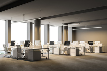 Spacious gray wall office with columns, side view