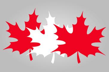 maple leaf flag. vector illustration