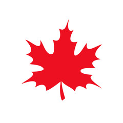 red maple leaf icon. vector illustration