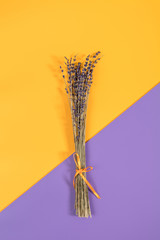 Beautiful dried lavender bouquet on violet yellow surface