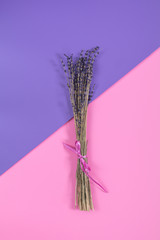 Beautiful dried lavender bouquet on violet pink surface.