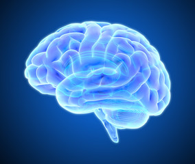 Brain scan illustration isolated on dark blue BG