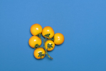 creative bunch of  yellow tomato on blue background for design