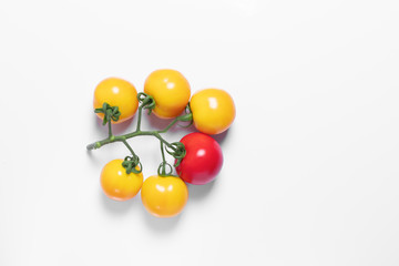 concept, we are different, creative tomato, white isolated