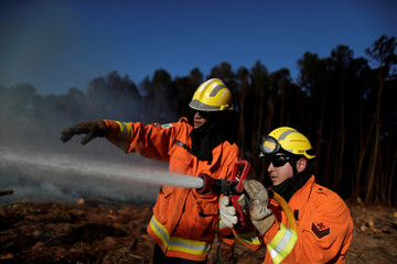 Fire-fighters work to extinguish wildfires near the Paranoa neighbourhood in Brasilia