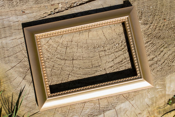Blank wooden picture  frame on  background