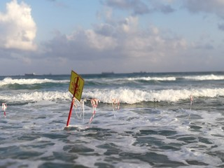 Toxic sea