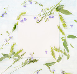 Frame with different herbs and flowers