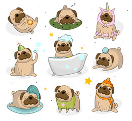 Cute pug dog set. Hand drawn pug stickers isolated on white background. Adorable pet dogs for cards, prints etc. Vector illustration