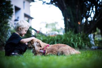 den Hund lieben