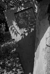 Vintage Door In The Woods - Black & White