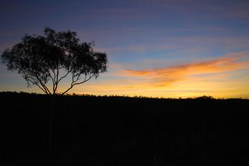 Sunset on El Questro