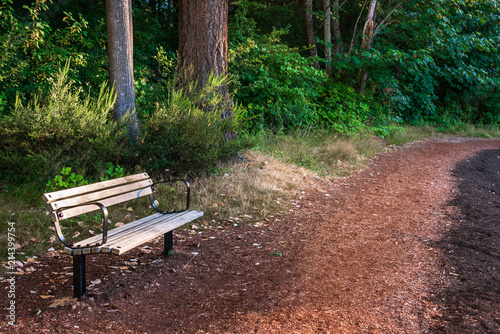 Wood And Metal Park Bench Along A Curved Walking Trail With Trees