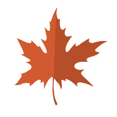 Red and orange maple leaf isolated on a white background. Autumn element for your design.