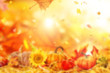 indian summer times background