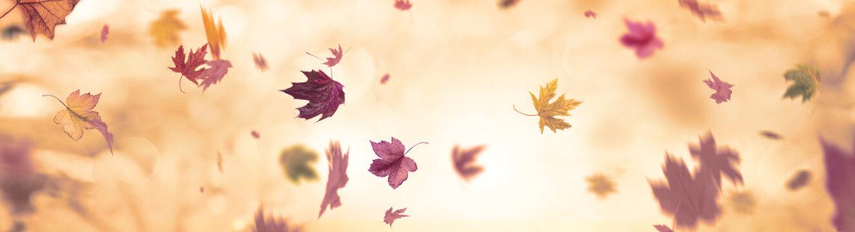 winter times autumn