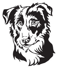 Decorative portrait of Dog Border Collie vector illustration