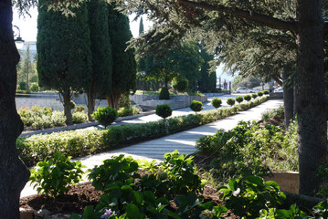 Elegant view of green lawns and bushes in the park with paths going between them