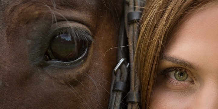 Horse muzzle and woman's face close-up with expressive eyes
