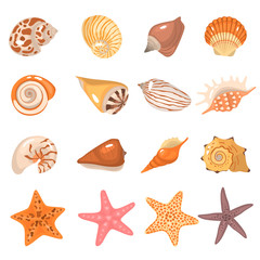Sea shells and starfish color cartoon icons set
