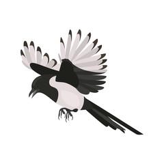 Flying coocku high quality color icon