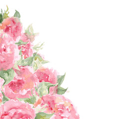 Watercolor pink tea rose peony flower floral composition frame background temple isolated vector