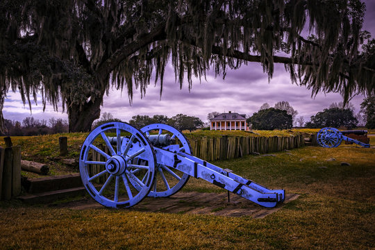 Cannon and Oak Tree  with Plantation