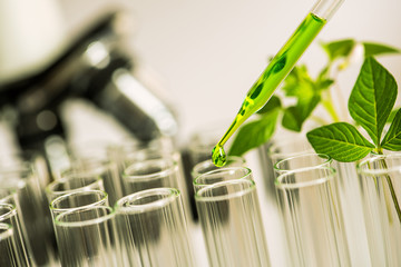 pipette over test tube dropping sample chemical into sample herbal plaint with microscope background , biotechnoloy research concept