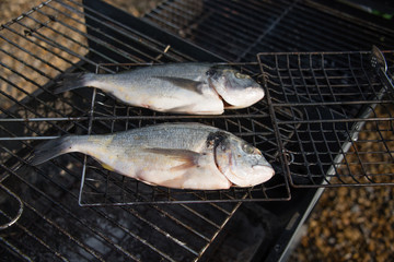 Two plump seabream ready to be cooked on the barbeque