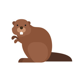 cute cartoon beaver in flat style on white background