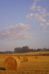 Fototapete - Paysage Campagne 321
