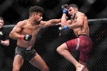 MMA: UFC Fight Night-Hamburg-Taha vs Narimani