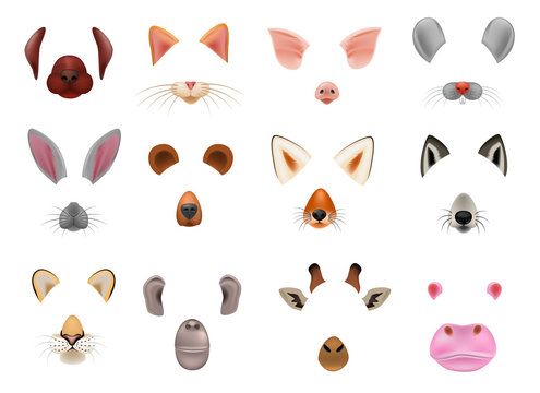 Animal mask vector animalistic masking face of wild characters bear wolf rabbit and cat or dog on masquerade illustration set of carnival masked costume monkey masquer isolated on white background
