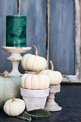 Thanksgiving Day or Halloween autumn decorations with heirloom mini white and grey pumpkins and candles against a rustic autumn background.