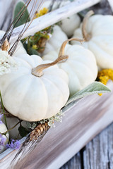Thanksgiving or Halloween table center piece. Old wooden tool box filled with mini white pumpkins, Lamb's Ears leaves, Golden Rod, and Queen Anne's Lace flowers.