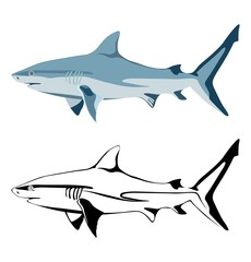 Set of images of shark and its silhouettes. Vector.