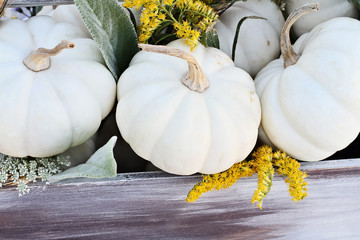 Old wooden tool box filled with mini white pumpkins, Lamb's Ears leaves, Golden Rod, and Queen Anne's Lace flowers to decorate a Thanksgiving or Halloween table.