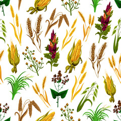 Vector grains and cereals seamless pattern