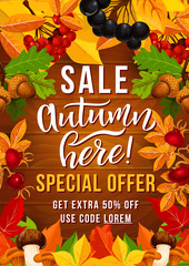 Autumn sale offer poster with fall season leaf