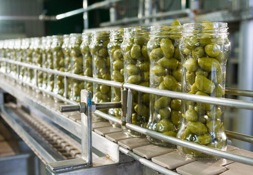 Olives in packaging line.