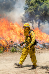 Firefighters Fighting Wildfire California