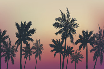 Palm trees summer background. Vector illustration