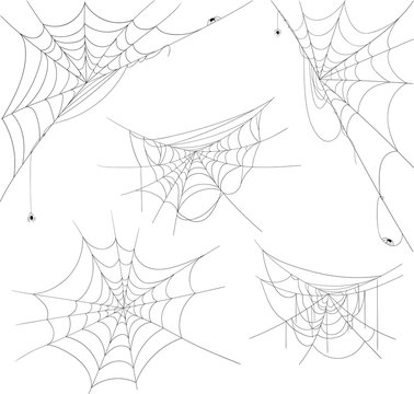 Black halloween spiderweb with spiders isolated on white.