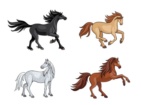 Horses - vector illustration