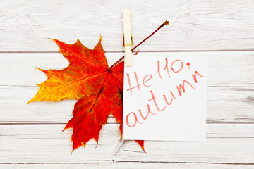 Tag with the Words Hello Autumn and a Colorful Autumn Leaf in the Background