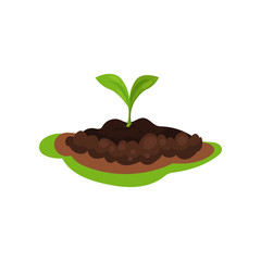 Small green sprout in the ground. Plant in soil. Nature theme. Flat vector for infographic poster about farming or gardening