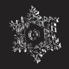 White snowflake on black background. This vector illustration based on macro photo of real snow crystal: star plate with hexagonal symmetry, six short, broad arms, elegant shape and relief surface.