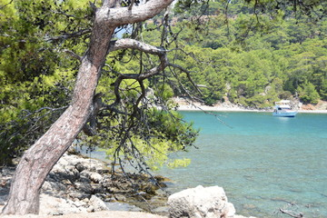 Turkey: beach next to ancient city of Phaselis
