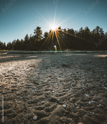 110797d11bbde Vancouver Island beach view on a clear blue sky with sunstar and pacific  coast. Canada.