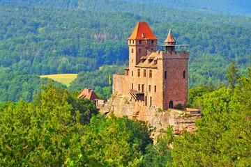 Erlenbach Burg Berwartstein im Dahner Felsenland - castle Berwartstein in Dahn Rockland